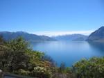 New Zeland (42)