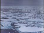 Antartica (001)