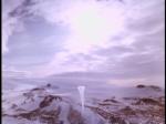 Antartica (135)