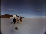 Antartica (147)
