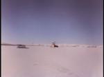 Antartica (174)