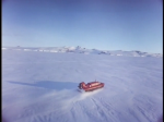 Antartica (177)