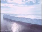Antartica (178)