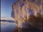 Antartica (180)