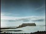 Antartica (035)