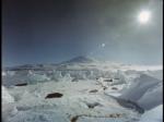 Antartica (038)
