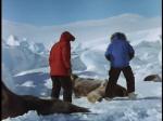 Antartica (044)