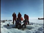 Antartica (047)