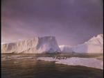 Antartica (078)