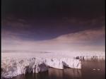 Antartica (079)