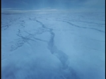 Antartica (082)