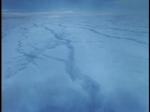 Antartica (083)