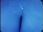 Antartica (092)