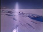 Antartica (098)