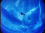 Antartica (099)